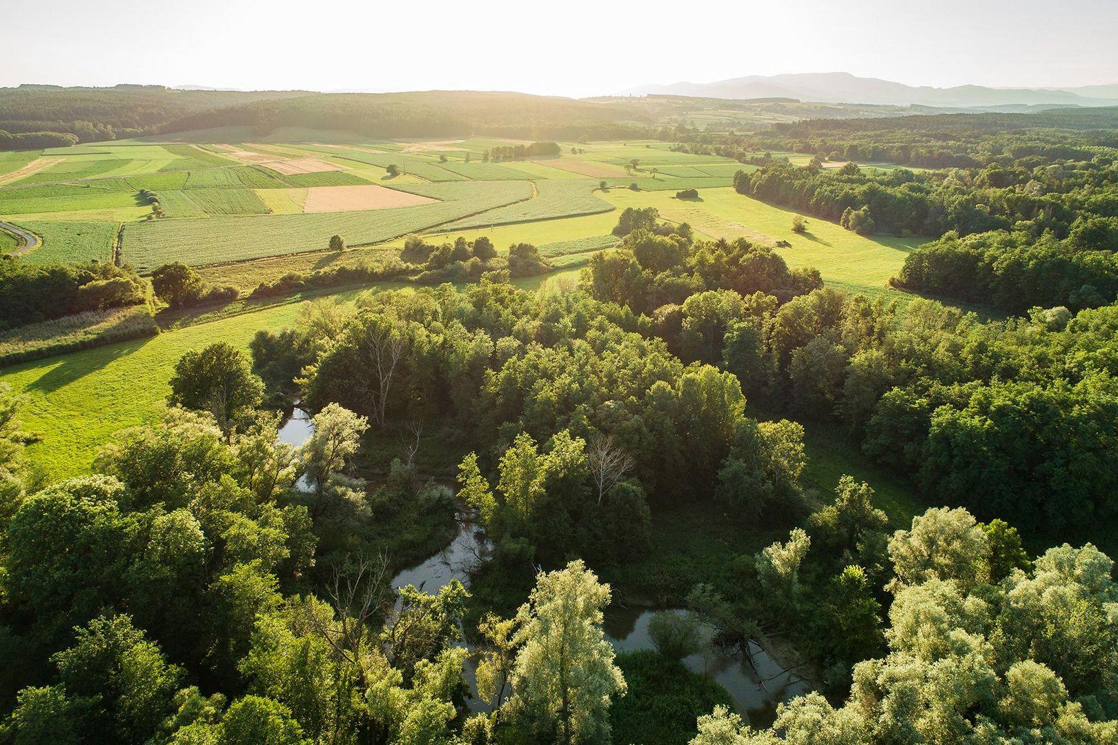 Fotogalerie - Ramsar Schutzgebiet 1