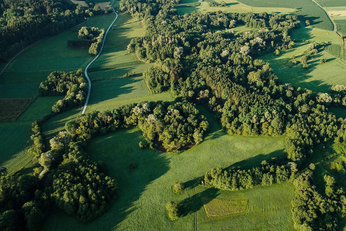 Fotogalerie - Ramsar Schutzgebiet 8