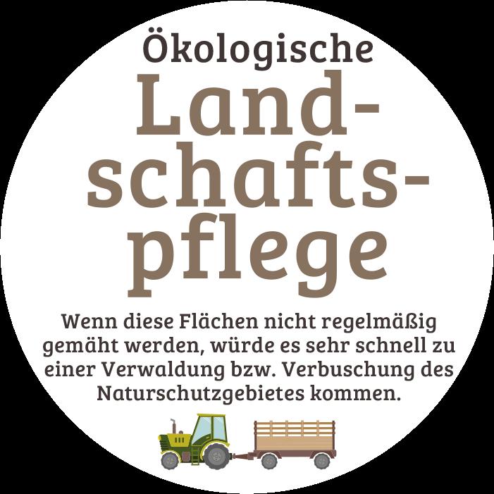 Ökologische Landschaftspflege