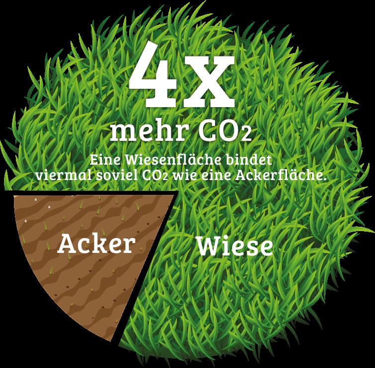 4x mehr CO2 binden